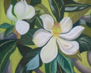 Magnolias at Evergreen  by Elaine Shortall